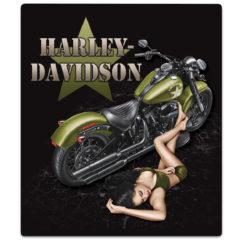 H-D® Duty Calls, Dealer Exclusive*